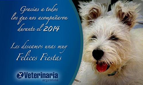 FELICES FIESTAS2014 ANCHO 498