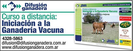 INICIACIÓN-2013 4328