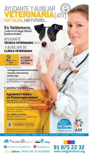 Revista Veterinaria Argentina » Programa de Ayudante y Auxiliar de ...