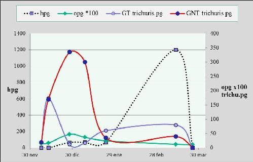 Fig. 1: Evolución de los conteos de huevos de Trichuris (trichuris pg), de los ooquistes (opg) y de los huevos de trichostrongylideos (hpg) en cabritos estabulados.