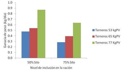 Figura 1. Ganancia de peso de terneros de destete hiperprecoz con altos niveles de silo en la dieta.