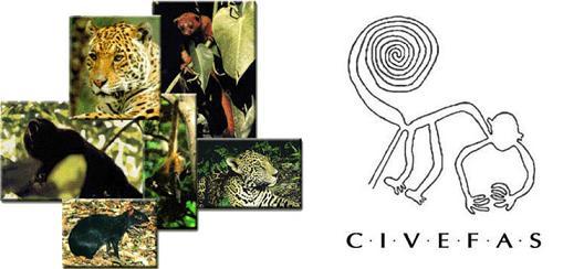 civefas