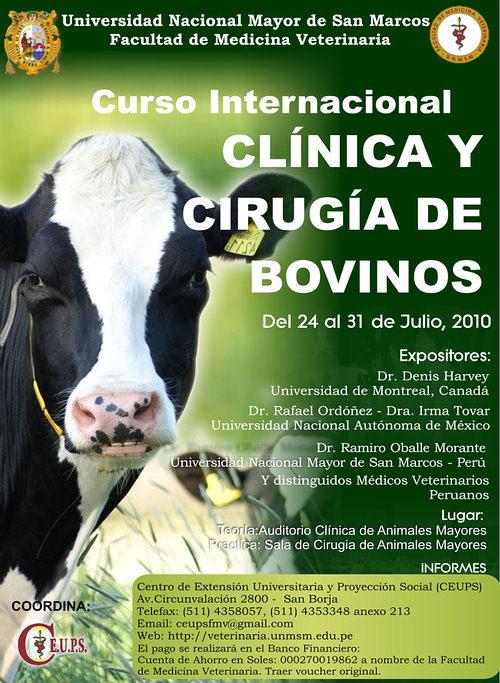 curso_clinica_cirugia_bovinos